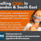 CSW Ad For Level 6